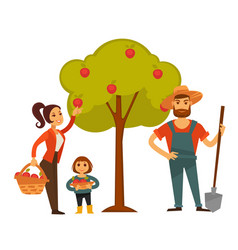 People gather fruit harvest farm vector
