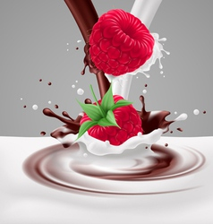 Raspberries with milk and chocolate vector