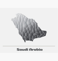 saudi arabia black and white network map vector image