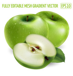 Two green apple and a slice on white background vector