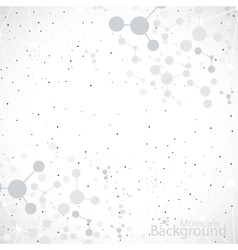 Molecules on gray background vector image