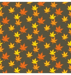 Colourful Autumn leaves vector image