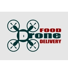 Drone quadrocopter icon Drone food delivery text vector image vector image
