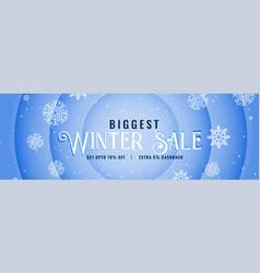 Big winter sale snowfall banner design vector