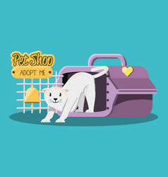 Cat with cage icon vector