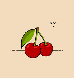 cherries with leaf vector image