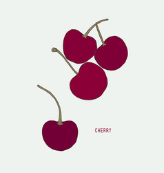 cherry drawing set isolated hand drawn berry vector image