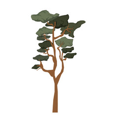 ecology tree plant icon vector image