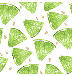 lime slices and seeds seamless pattern set in vector image
