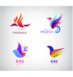 Set bird logos icons in vector