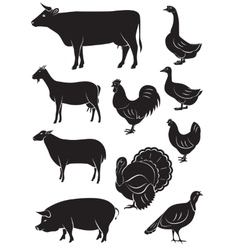 Set icons with farm animals and birds vector