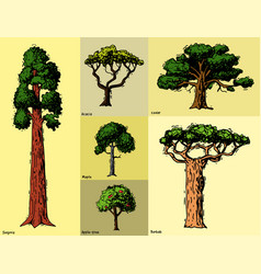 Tree sketch hand drawn style types green vector