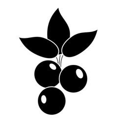 blueberry leaves diet pictogram vector image