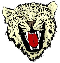 Wild Cat vector image