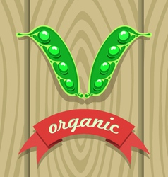 pea pod on wooden boards with red ribbon vector image