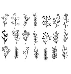0078 hand drawn flowers doodle vector