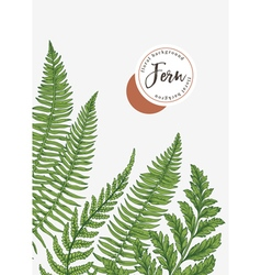 Background with leaves fern vector