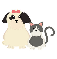Cute little cat and dog mascots vector