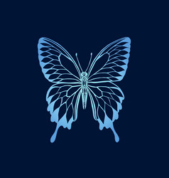 Gradient butterfly on blue background butterfly vector