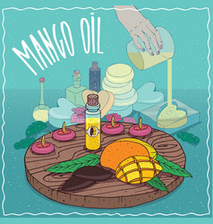Mango seed oil used for soap making vector