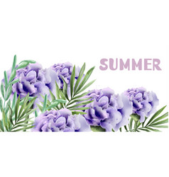 purple roses summer background watercolor vector image
