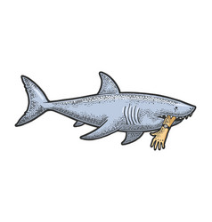 shark with bitten off hand in mouth sketch vector image