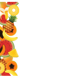 tropical fruit background vector image