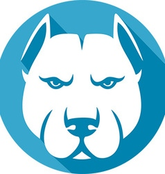 Pitbull Icon vector image