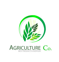 Agriculture comapny logo vector