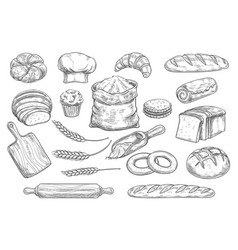 Bread and bun sketch bakery and pastry food vector