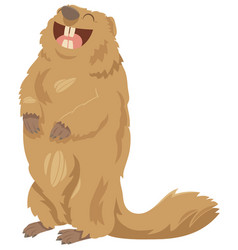 cartoon marmot animal character vector image