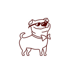 cool pug dog with sun glasses vector image