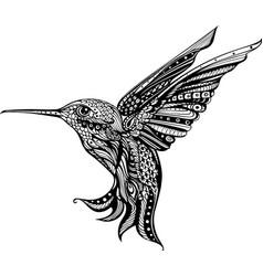 Flower hummingbird colibri art entangle vector