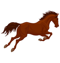 Jumping stallion arched its neck vector