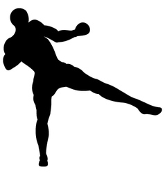 Low thai kick vector image