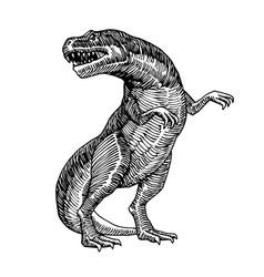 Reptile jurassic period dinosaur tyrannosaurus vector