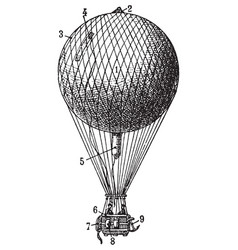 vintage air balloon vector image