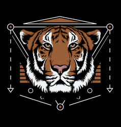bengal tiger scared geometry design vector image