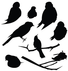 Bird SIlhouette Animal Clip Art vector