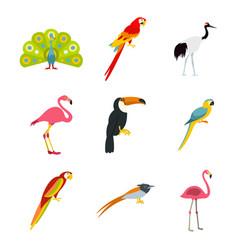 exotic birds icon set flat style vector image