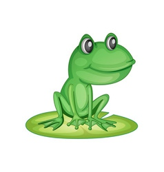 Frog on a lily pad vector