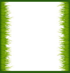 green grass frame vector image