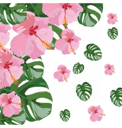 Pink flowers branch isolated vector image