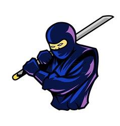 Steady ninja vector