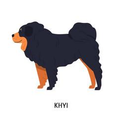 Tibetan mastiff or drog-khyi fluffy pastoral vector