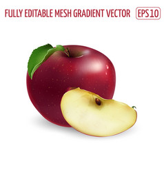 Whole red apple with a slice on white background vector
