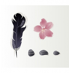 stones and feathers vector image