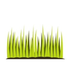 Growing grass flat icon vector