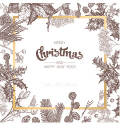 background made with christmas festive plants vector image