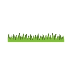 Grass with isolated vector